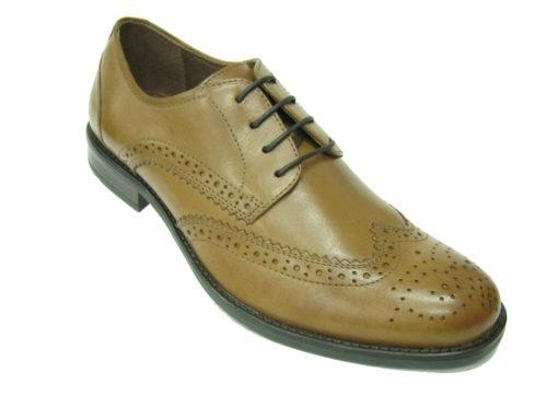 Męskie buty , kolor brązowy.